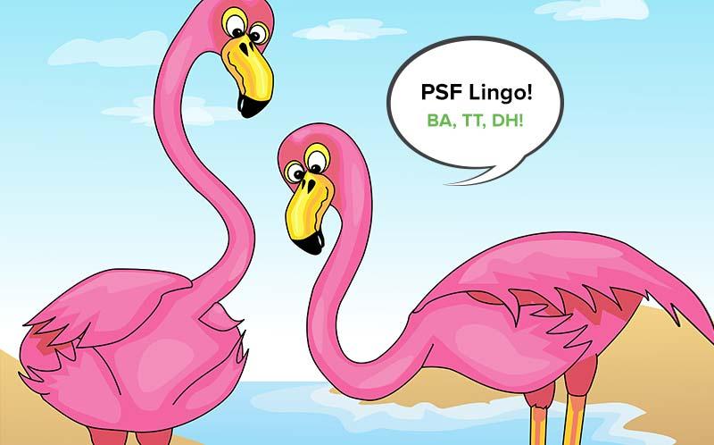 PSF Lingo